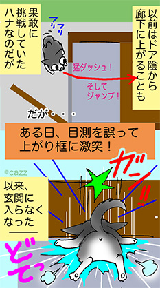 inumann-177a.jpg